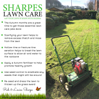 Late Summer & Autumn Lawn Care