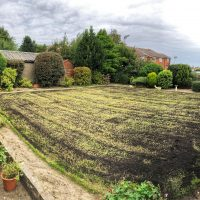 Re-seeding and Top-Dressing Lawns